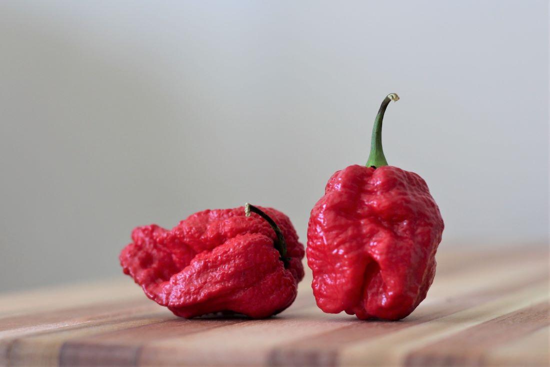 7 Pot Brain Strain Pepper