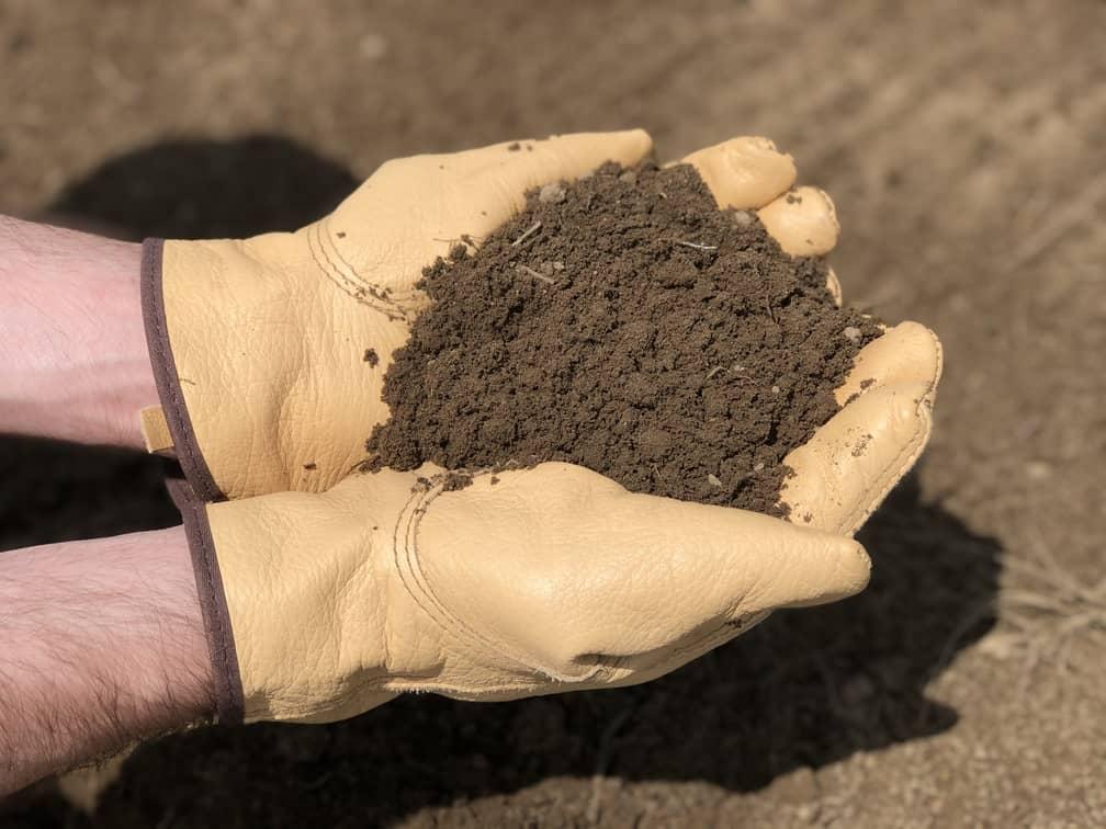 Garden Soil For Pepper Plants