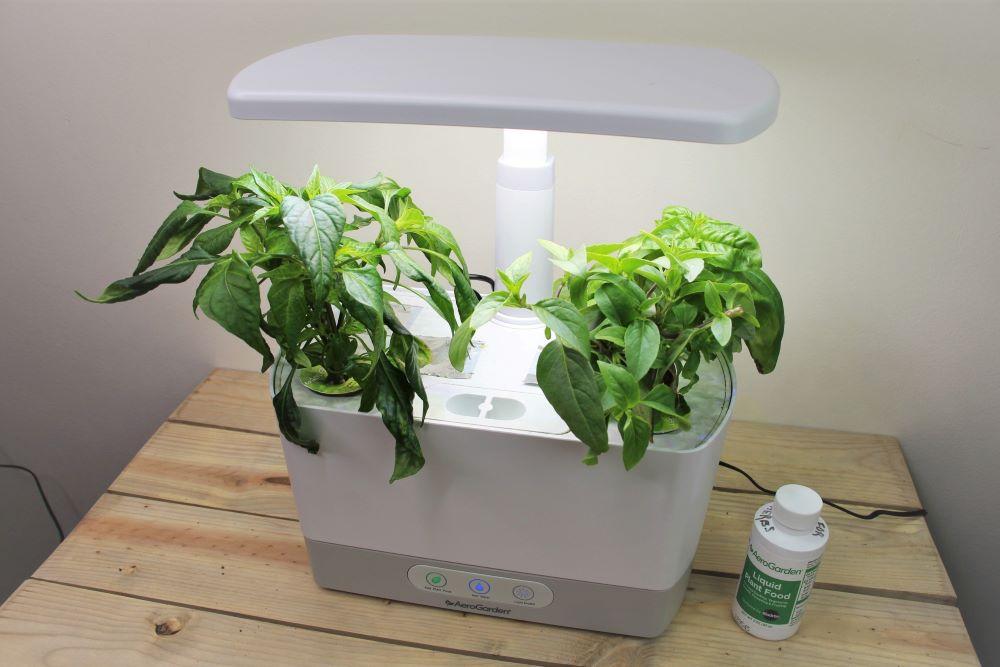 AeroGarden Plants