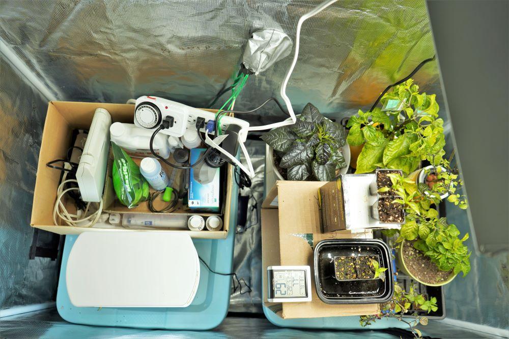 Mars Hydro grow tent interior space